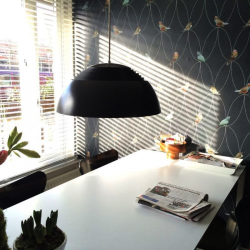 Brunklaus Birds Anthracite Wallpaper in private home