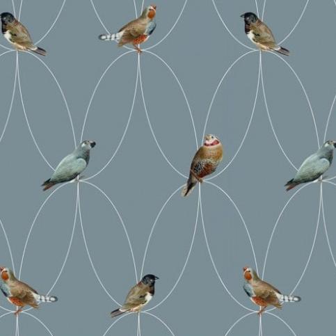 Wallpaper 'Birds' Blue