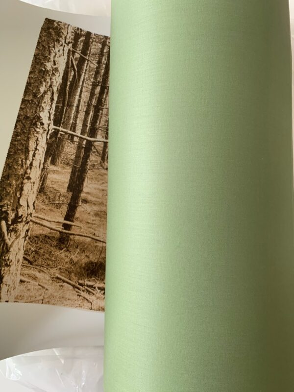 lampshade forest green